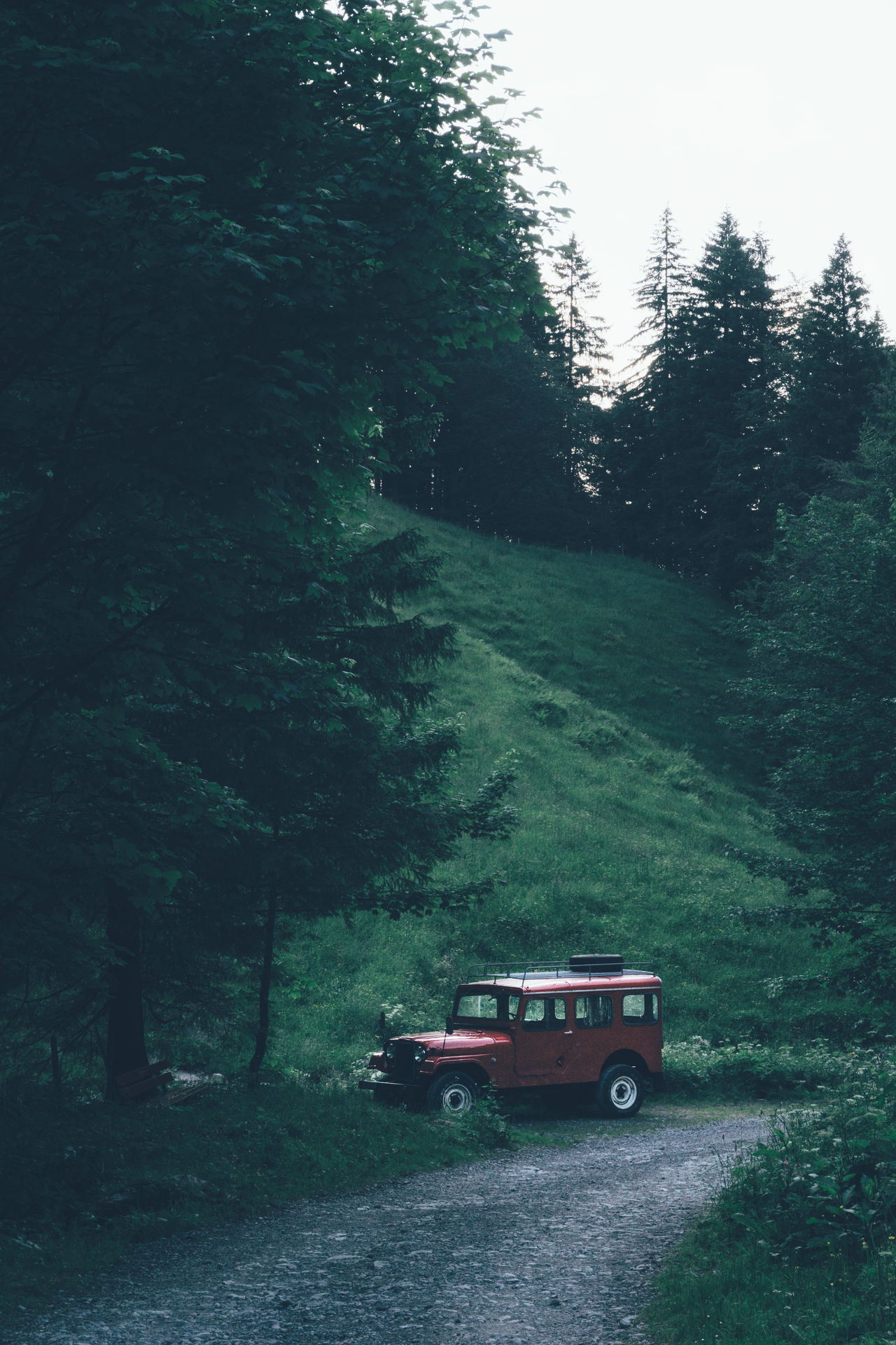Red offroad car parked in a forrest of the Alpstein mountain massif Jeep Red Car Suisse  Landrover  Car Switzerland Swiss Green Forrest Forrest Red Jeep Parked Car Forrest Trail Alpstein Appenzell Brüeltobel 4 Wheeler Outdoor Adventure Offroad Adventure Club