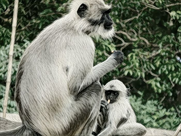 Mother and son Animal Themes Animals In The Wild Nature Mammal No People Day Close-up Outdoors First Eyeem Photo EyeEmNewHere