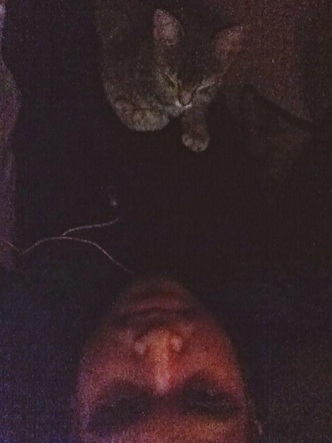Rosaura That's Me Enjoying Life Handsome Man I Love My Cat Relaxing Sleeping People Man&cat FollowMe On Twitter @travisrockmirez
