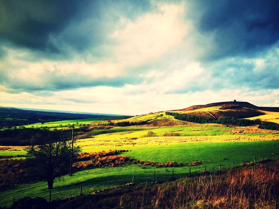 Rivington Chorley Rivingtonpike Lancashire Landscape Landscape_Collection Landscape_photography Countryside Walking Fields Britishcountryside Greatbritishcountryside England Cold Days Showcase: January