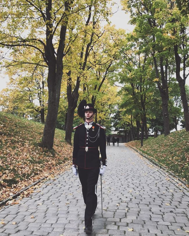 Royal Guard Tree Full Length Lifestyles Footpath Beauty In Nature Autumn Oslo Royal Guard