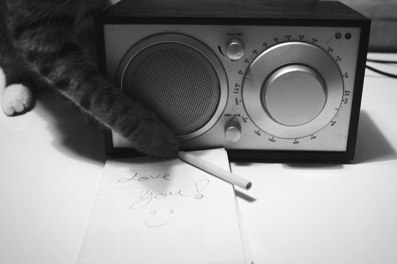 Radio Week On Eyeem Cat Cats Of EyeEm Love Love Is In The Air Love Declaration Love Note Weekly Eyeem Letter Love Letter Animal Themes Love Moments Home Is Where The Art Is WeekOnEyeEm Black And White Collection  Domestic Cat Domestic Animals The Week On EyeEm Cute Cute Cats Cute Message TakeoverMusic