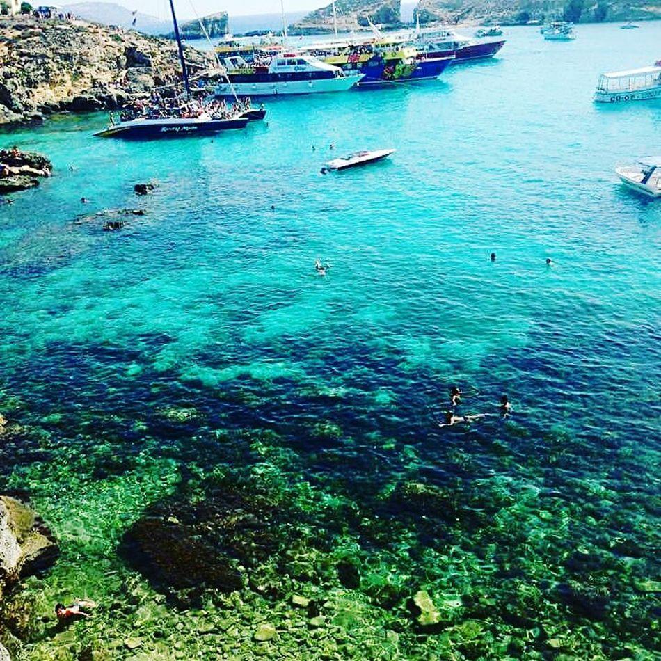 Maltaphotography Malta The Blue Lagoon, Comino Comino 2015  Travel Sea Swimming Boats Blue