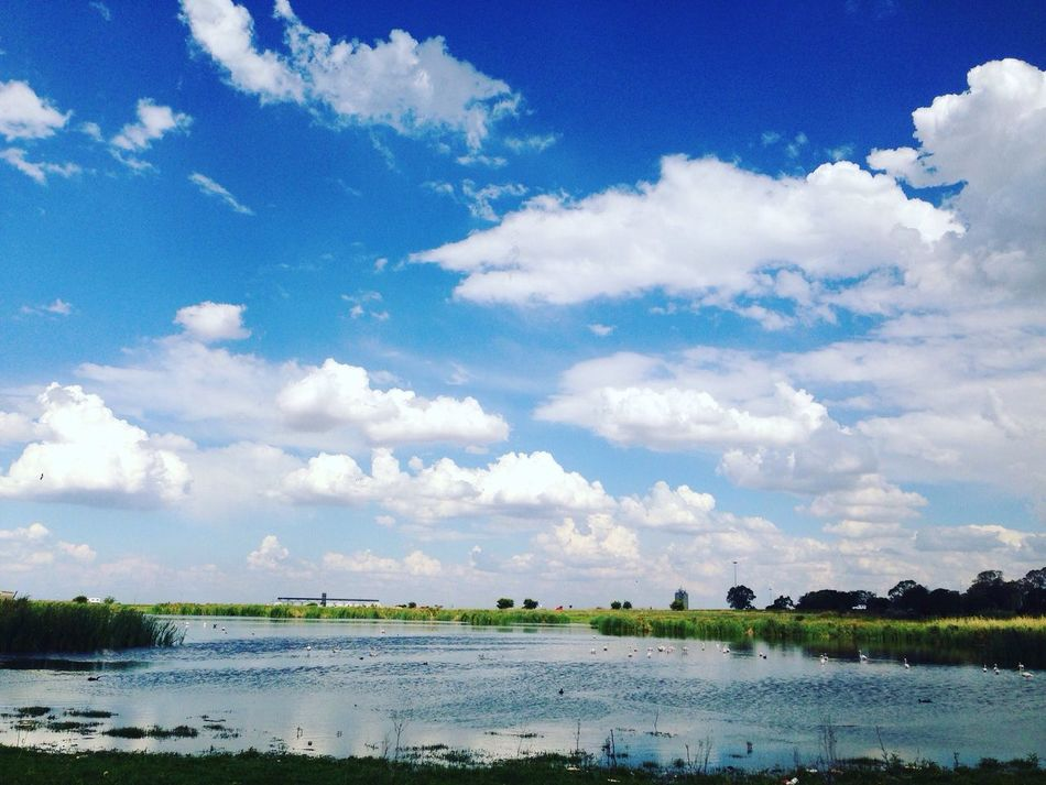 The pond view. Water Sky Nature Scenics Cloud - Sky Tree Tranquility Beauty In Nature Tranquil Scene Growth Outdoors Day Lake No People Landscape