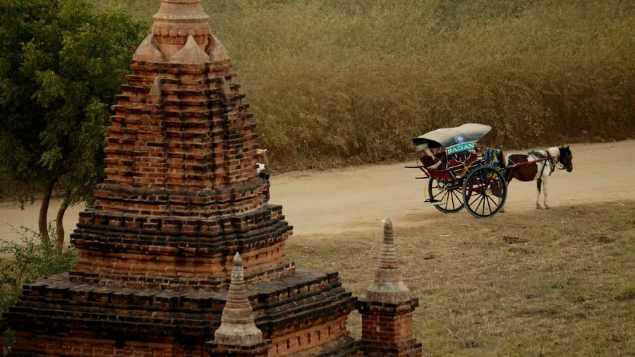Bagan, Myanmar Roof Architecture Bagan, Myanmar Carriage Ride Day History Horse Myanmar Outdoors Path In Nature Real People Spirituality Temple Travel Travel Destinations Tree