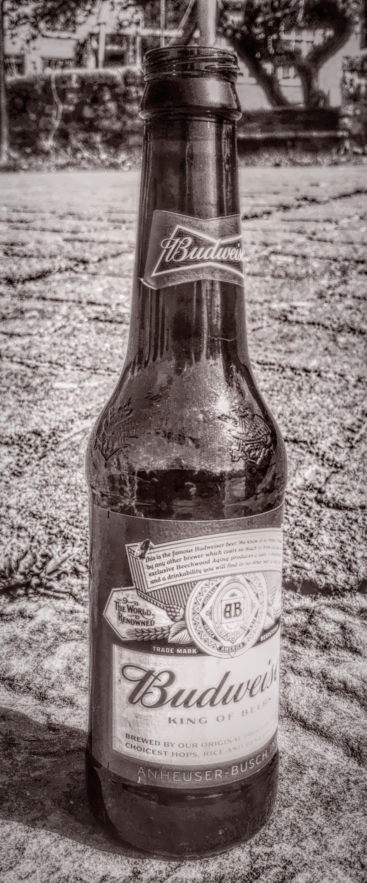 Budweiser Beer Iphonephotography Iphone6s Mix Filter