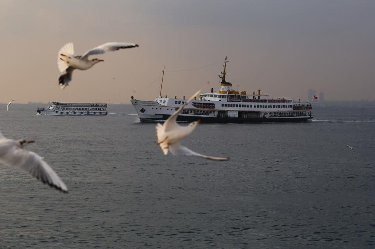 Istanbul Istanbuldayasam Istanbul City Taking Photos Istanbul Turkey Ships Seagulls And Sea Seagulls Canonphotography Canon 24-105 F4L Canon 6D Foggy Morning