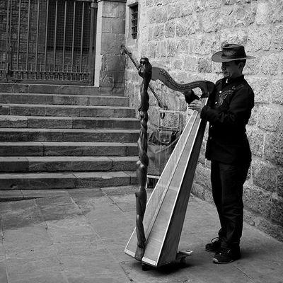 Ciutatvella Harpa Streetmusician Barcelona