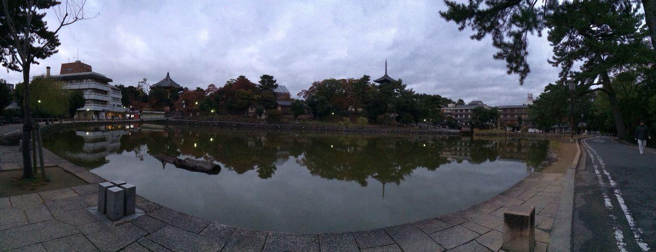 奈良 猿沢池 興福寺 World Heritage