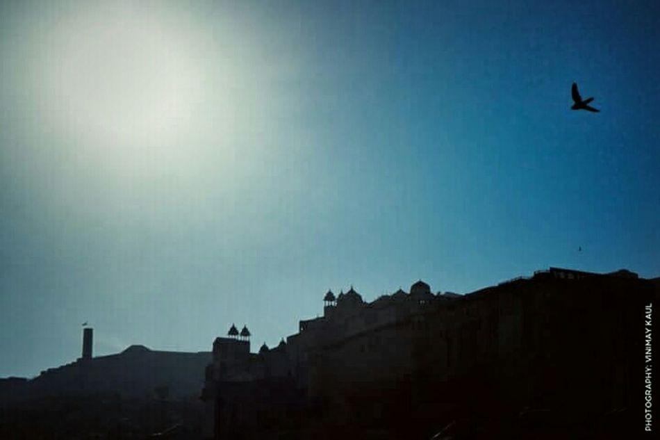 Amer Fort Silhouette Jaipur Rajasthan Incredible India Bird EyeEm Best Shots EyeEm Best Shots - Architecture Thegreatoutdoorswithadobe