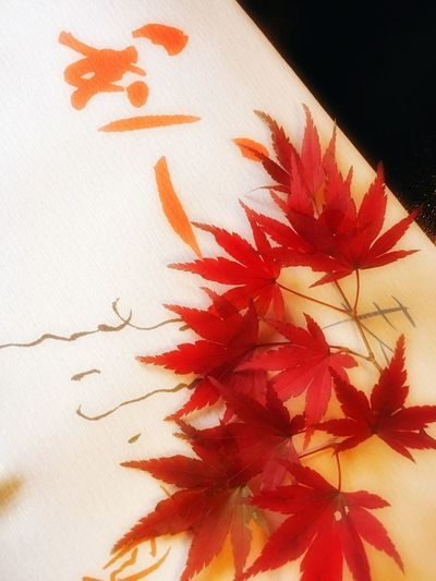 Calligraphy and maple leaves 🍁 Red Close-up No People Indoors  Maple Leaf Day Caligraphy Autumn Autumn Colors Autumn Leaves Table Leaves Nature Paper Washi Japanese Culture Japanese Paper White Orange