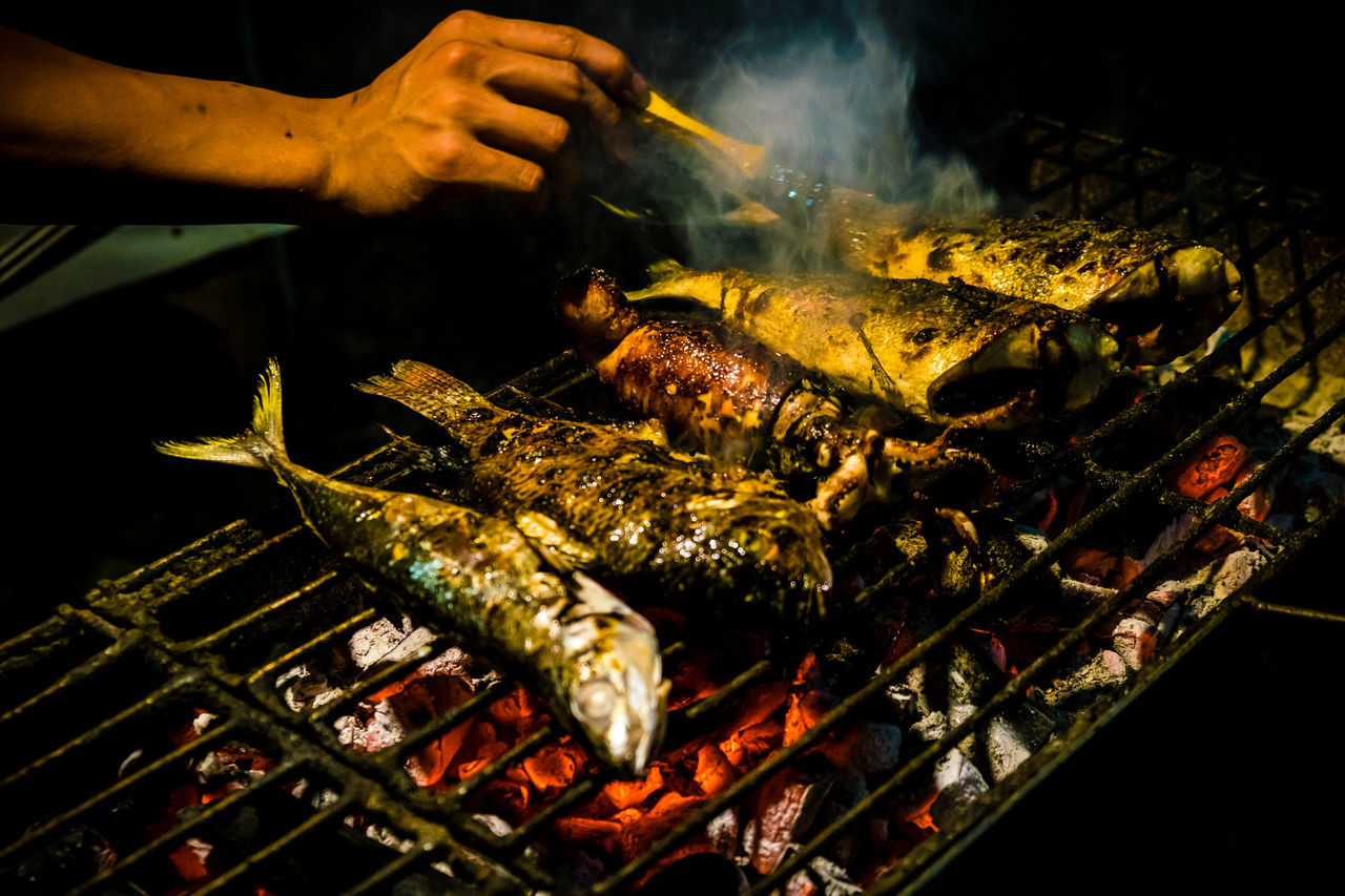 Adult Adults Only Barbecue Barbecue Grill Close-up Delicious Food Dinner Food Food Preparation Freshness Grilled Fish Grilling Healthy Eating Human Body Part Human Hand Illuminated Leisure Activity Men Night Omega 3 One Person People Smoke - Physical Structure Diet Protein