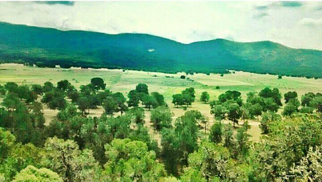 Mexico Coahuila, México Sierra El Ejido Cuauhtémoc Nature Capture The Moment Beautiful