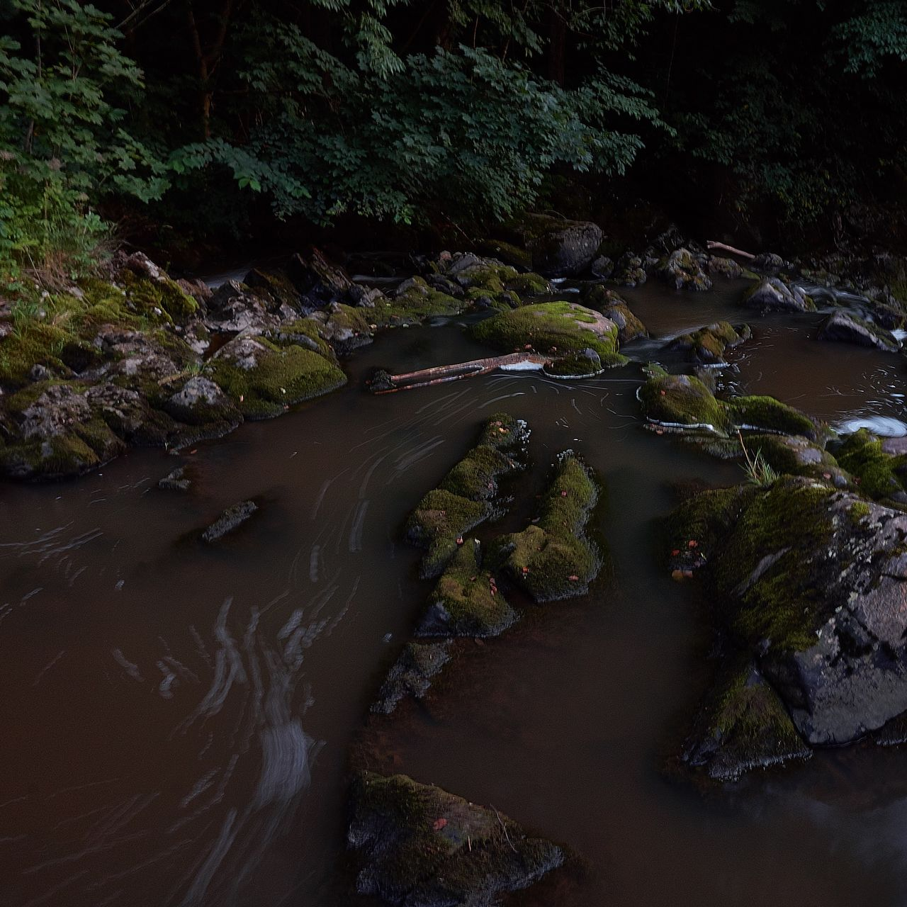 water, river, rock - object, nature, waterfall, stream - flowing water, motion, no people, outdoors, long exposure, tranquility, beauty in nature, riverbank, forest, scenics, plant, day, tree