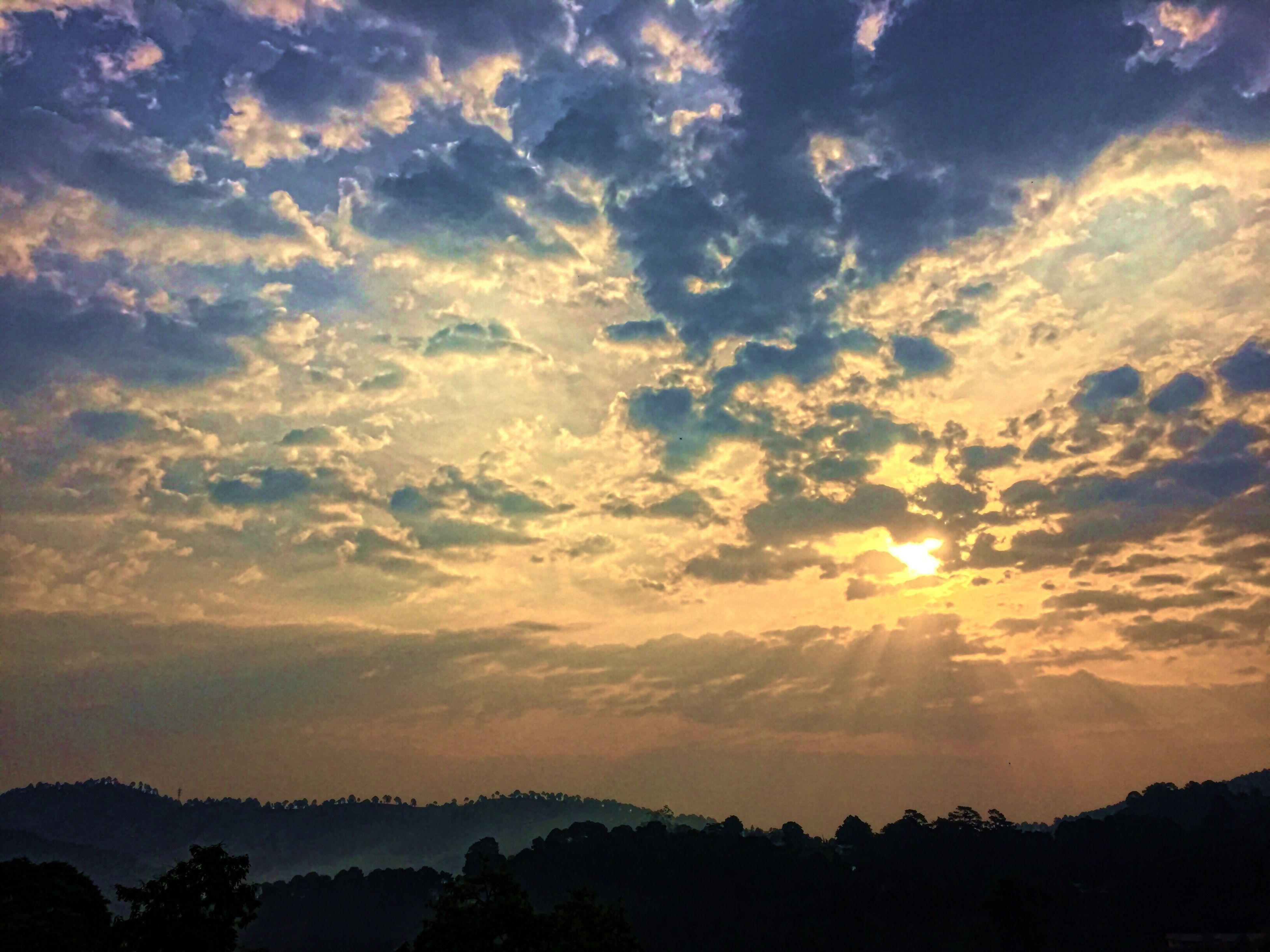 Dawn Sunshine