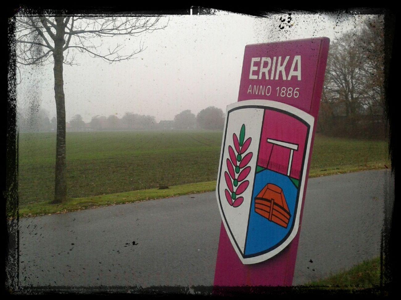 November-Grau in Haren_Ems