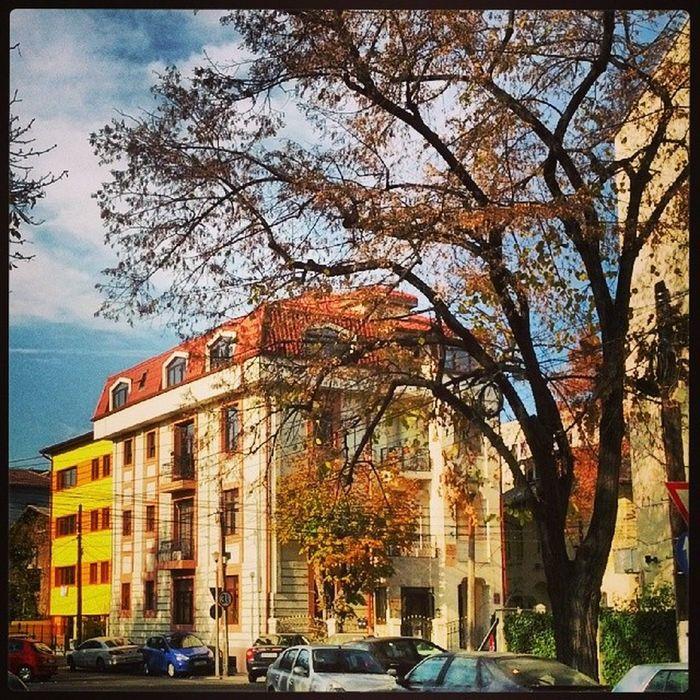 Serenity now... Bucureşti Romania Cotroceni