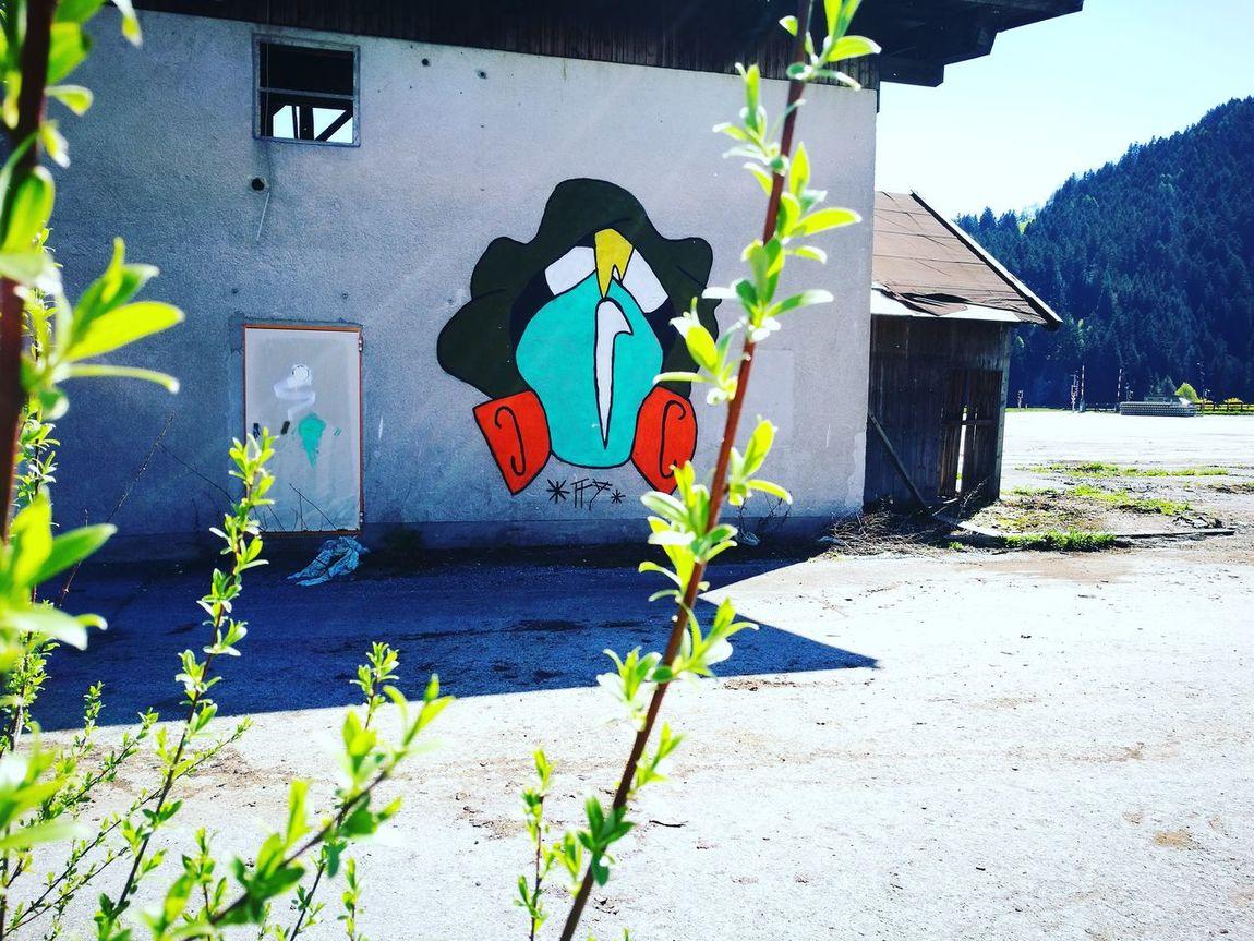 Grafiti Wall