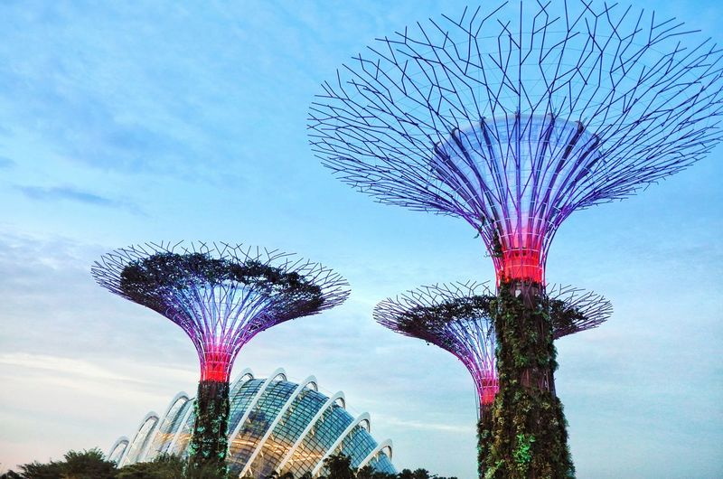 Singapore, Garden by the Bay~ Garden Marina Bay Sands Singapore City Singapore View Singapore Low Angle View Sky Amusement Park Tree Arts Culture And Entertainment Outdoors Amusement Park Ride Travel Destinations No People Day Architecture Nature