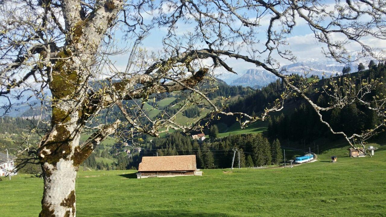 Swizerland Beautiful Swiss Luzern EyeEm Best Edits