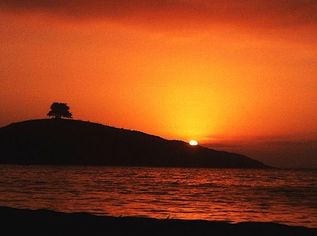 ?terminando un buen día ?? Enjoying The Sun Taking Photos Zapallar Sunset Silhouettes Summerismagic