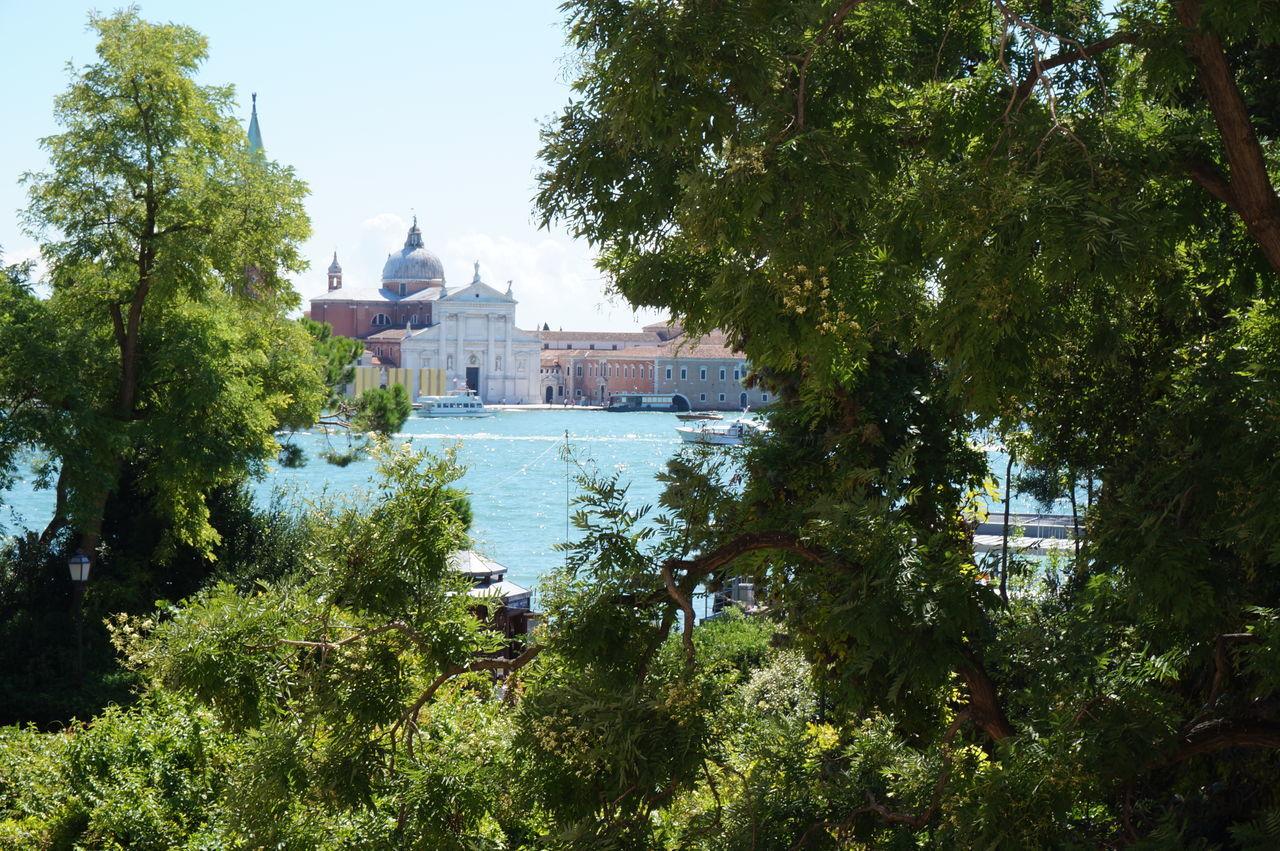 Church Of San Giorgio Maggiore Seen Amidst Trees
