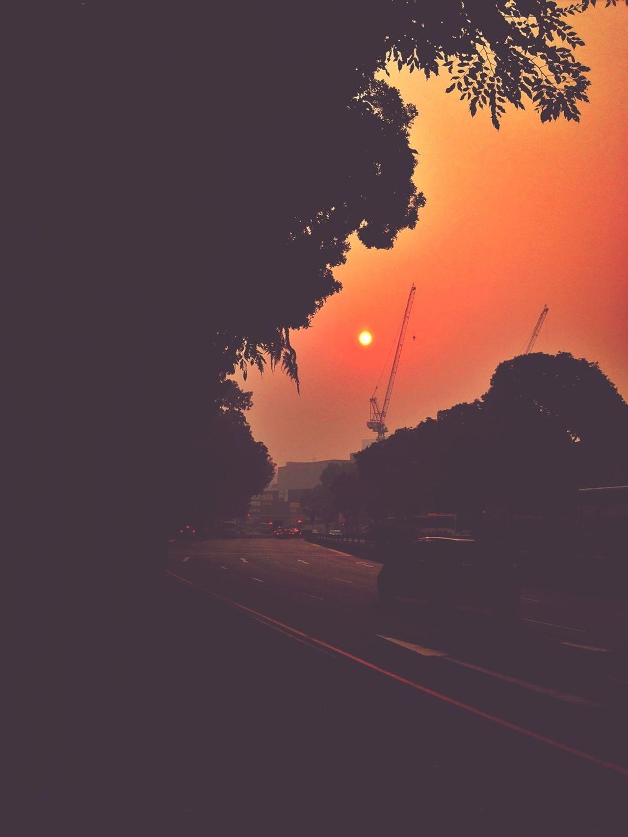 Hazy Days