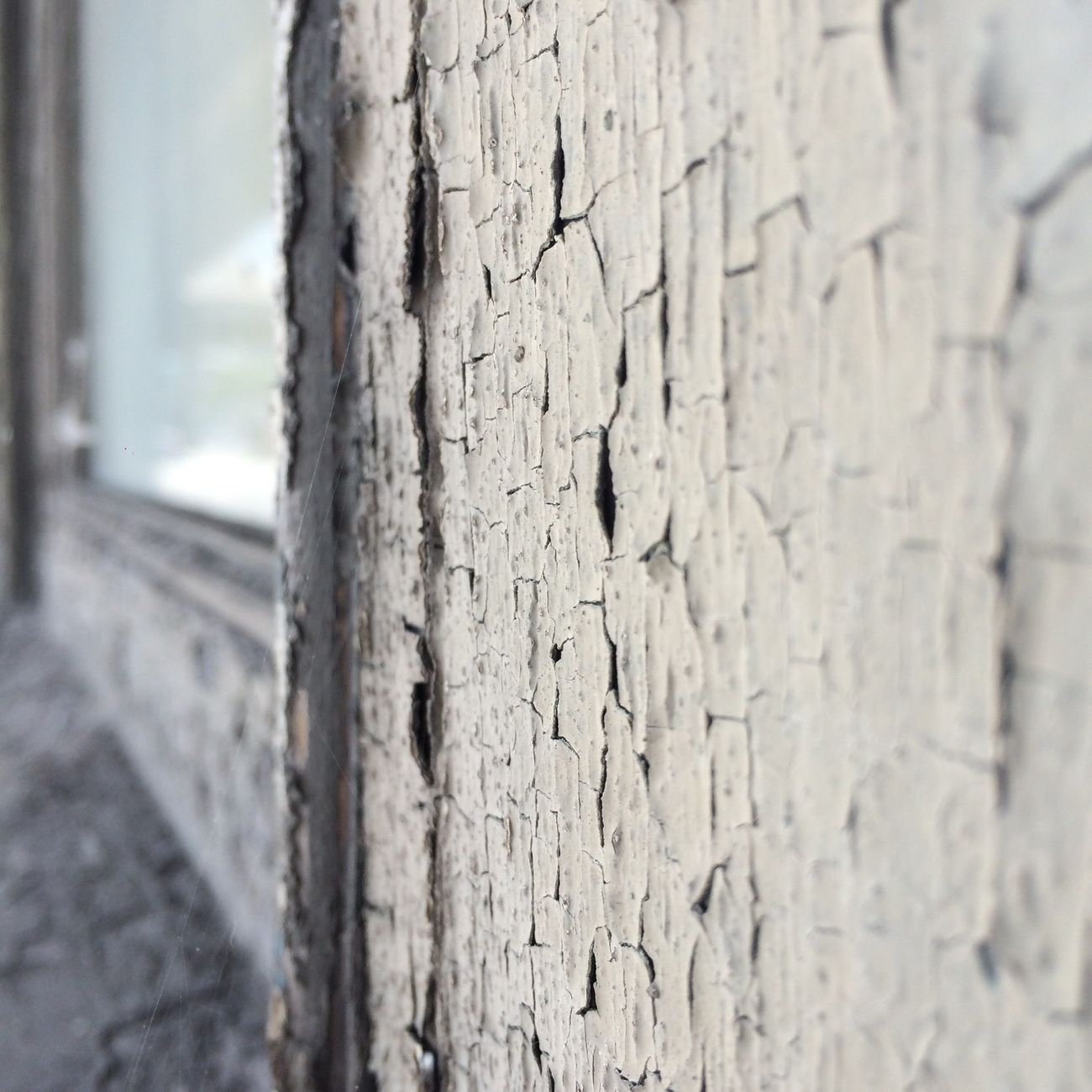 EyeEm Selects Peeling paint and vanishing point Textured  Close-up Day No People Wood - Material Tree Trunk Cracked Built Structure Outdoors Nature Architecture Vanishing Point