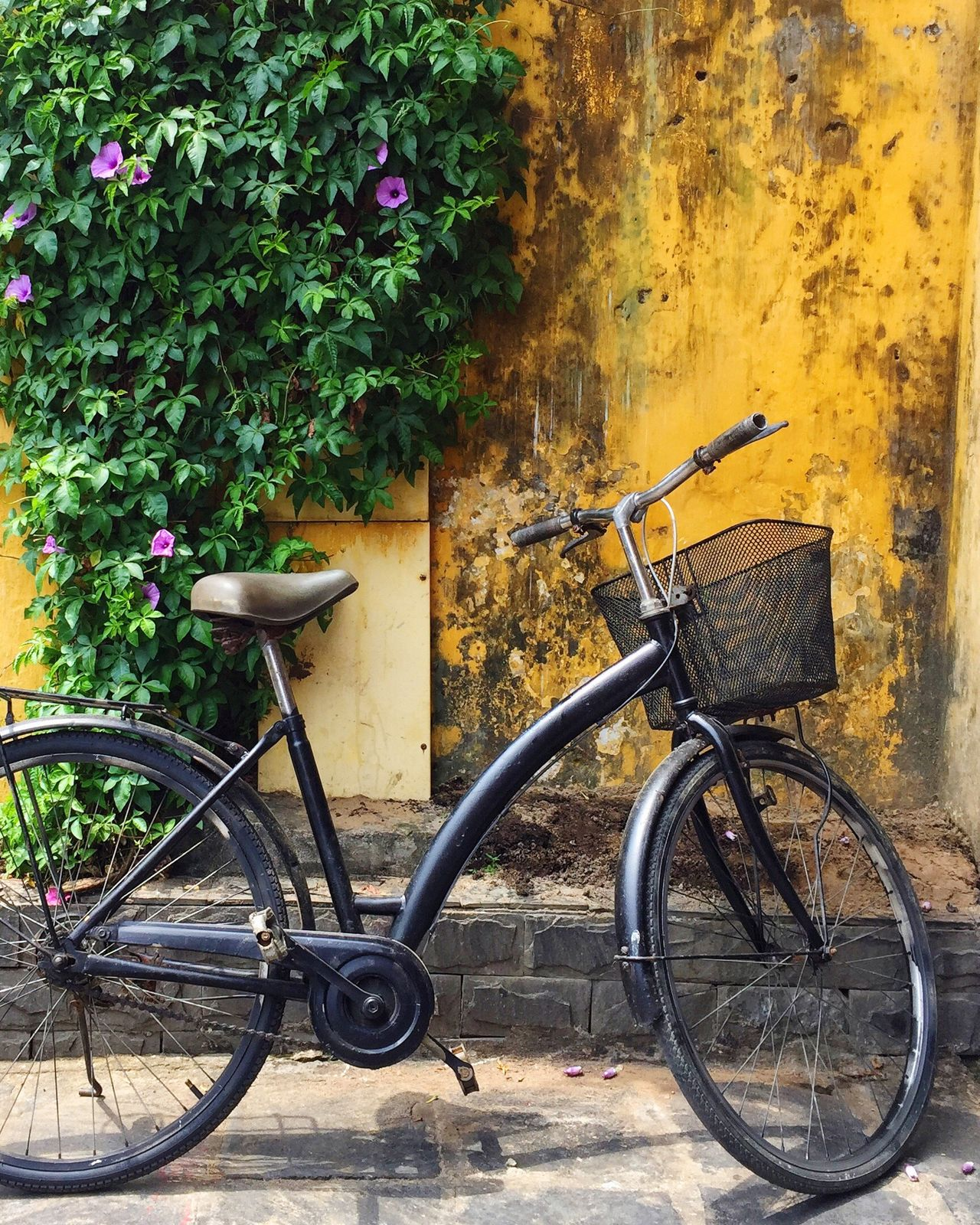 Hoi An, Vietnam Bicycle Transportation Wall Textures Bicycle Parking Hoi An Vietnam Streetphoto_color Streetphotography Travel Photography