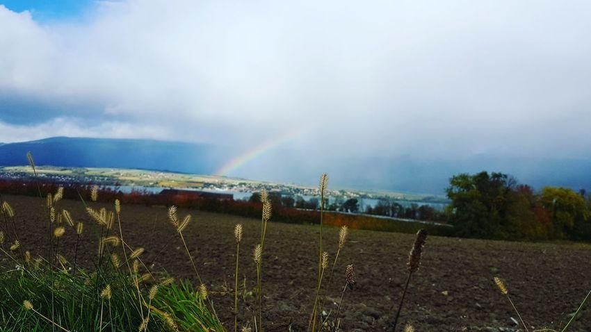Rainbow Rainday Montagne Panorama Switzerland Yverdon-les-Bains 🌈🌈🌈⛅⛅☁🌞🌙🌄🌏 🌧☂️