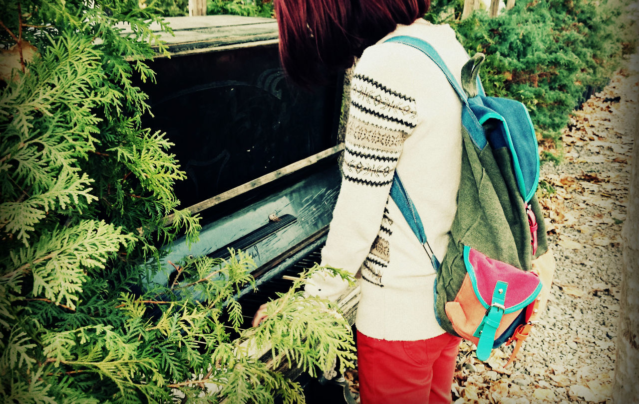 Autumn Bagpack Colors Day Fall Colors Garden Gardenia Georgia Green Color Leaves Nature Nature One Woman Only Outdoors People Piano Piano Moments Redhead Relaxing Sunlight