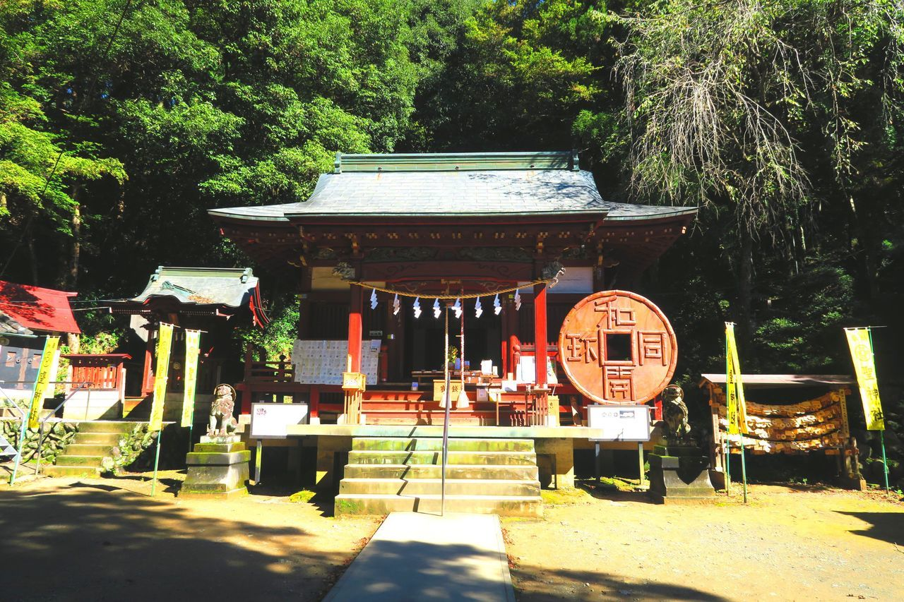 聖神社 Shrine Shrine Of Japan 日本 Japan Japanese  Nature