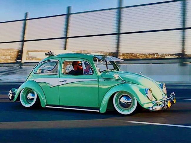 Ahahahha :) Vosvos Beetle Fusca Tosba Turtle Volkswagen Relaxing Antalya 1966 Turkuaz