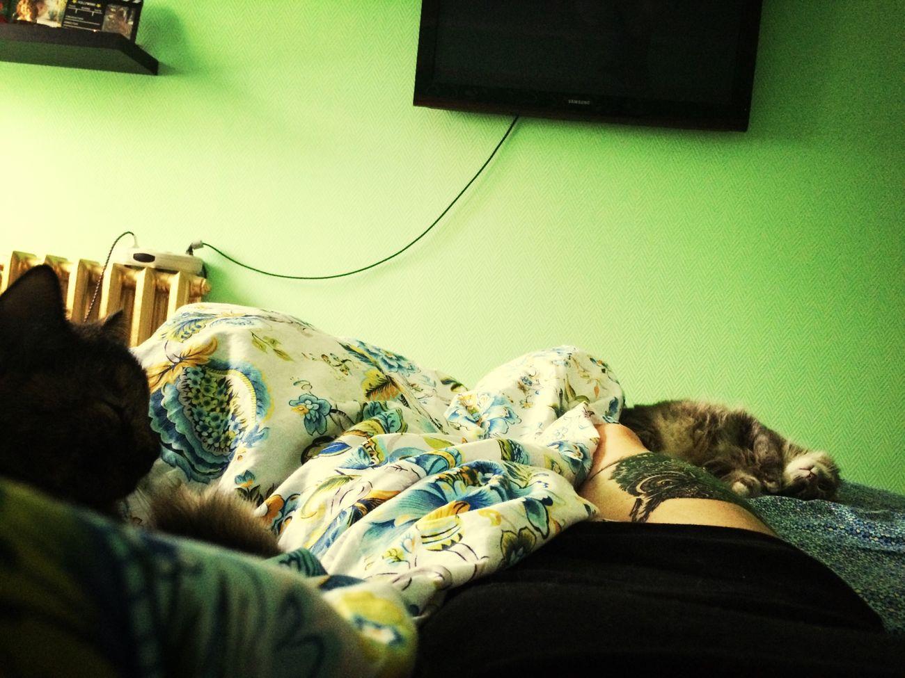 Relaxing Tattoo Cat Good Morning :) вот так и прошли мои выходные