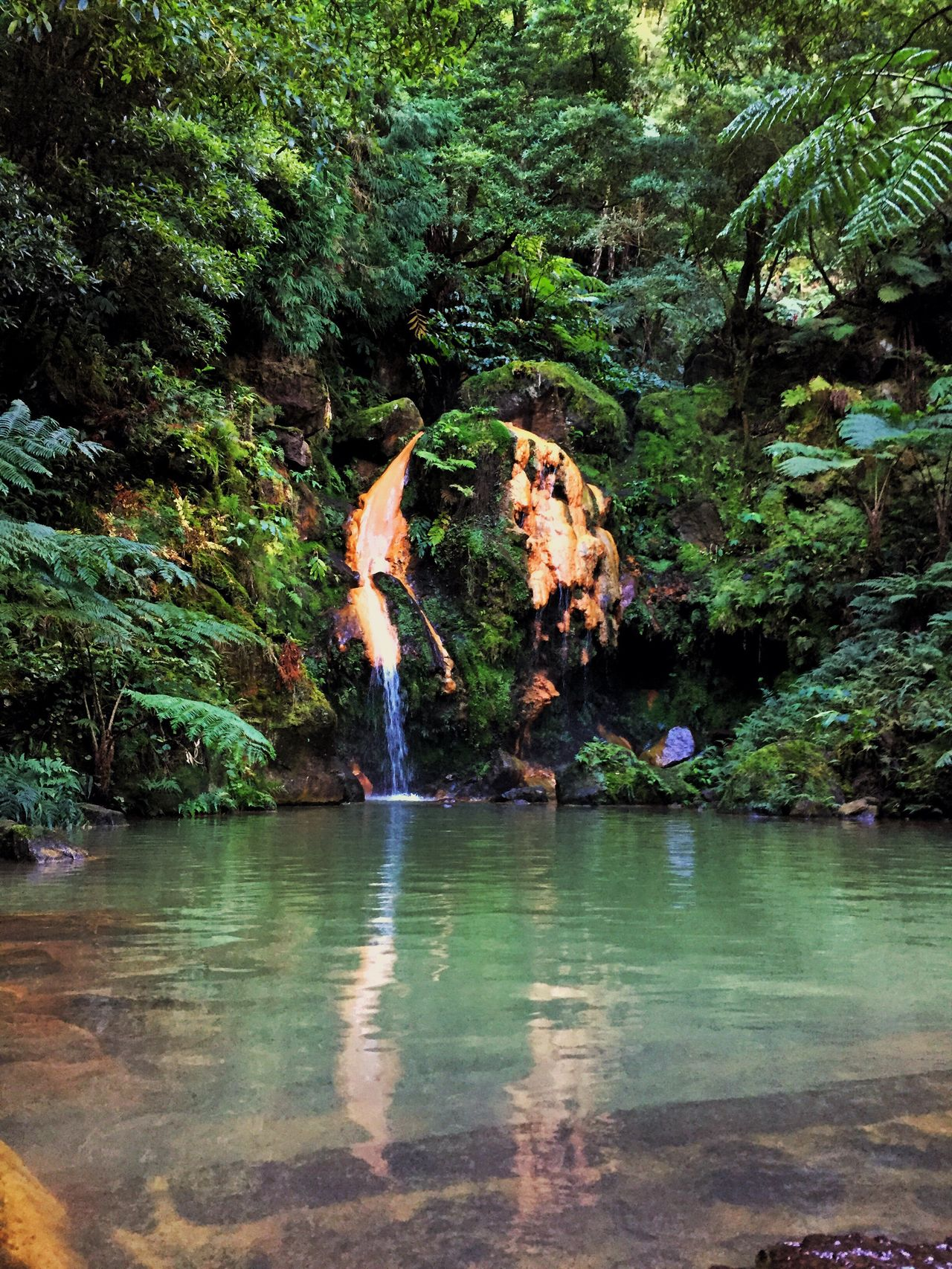 Azores Portugal #potugalemfotos #festanaaldeia15 #cannonfotography Tree Water Nature Beauty In Nature Reflection Forest Waterfront Scenics Tranquil Scene Tranquility Outdoors No People Waterfall Day