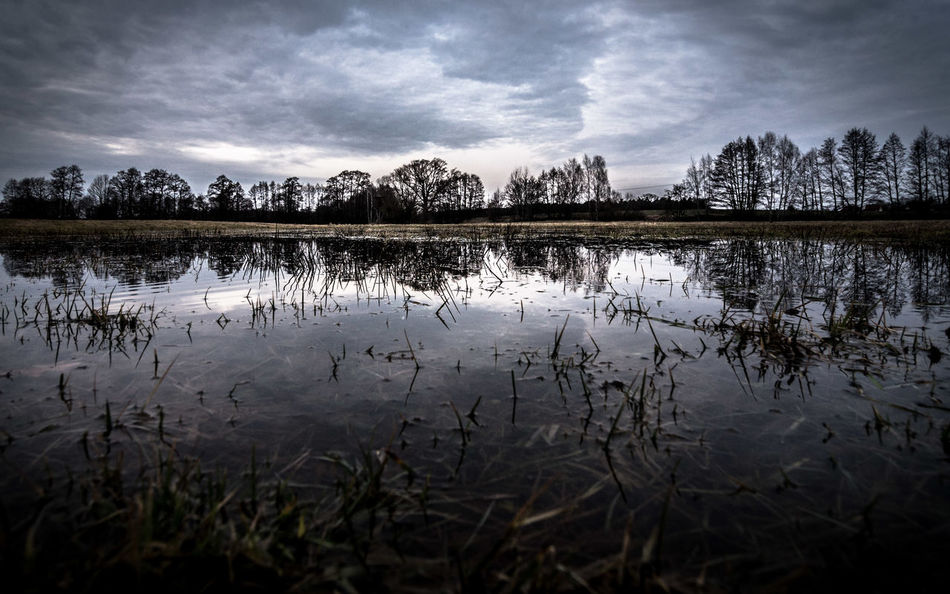 water and trees and clouds Beauty In Nature Cloud - Sky Clouds Day EyeEm Best Shots EyeEm Nature Lover Horizon Horizon Over Water Lake Landscape Mirror Nature No People Outdoors Plant Reflection Scenics Sky Tranquil Scene Tranquility Tree Water Water Reflections