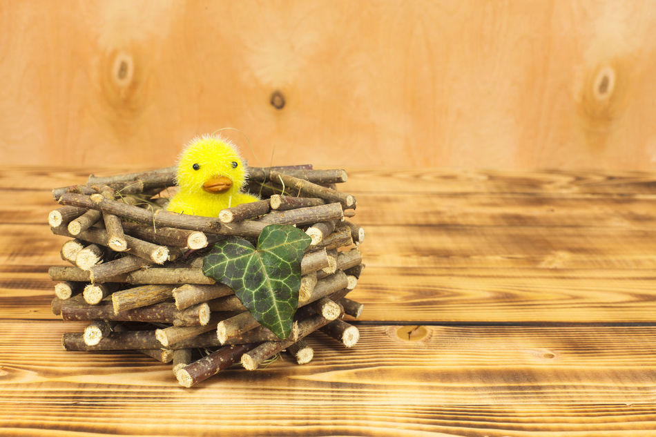 Chick Close-up Day Easter Easter Festival Indoors  Kreativ Kreatives No People Stuffed Toy Table Teddy Bear Wood - Material
