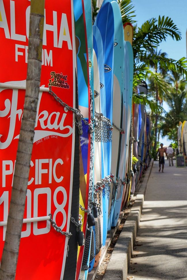 A normal day in a tourist town... Waikiki Beach Waikiki Beach Photography Tourism
