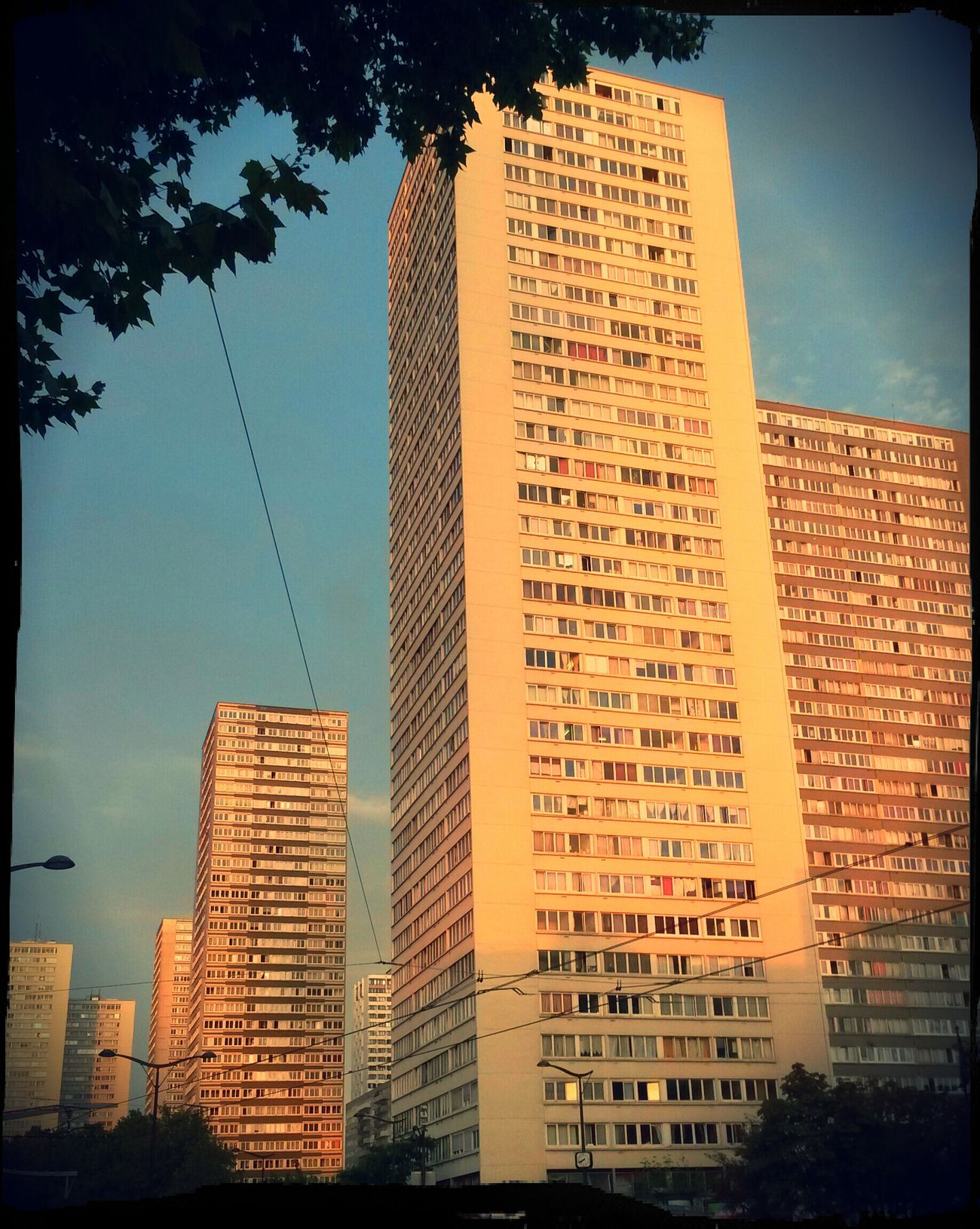 Morning Going To School Towers 13eme