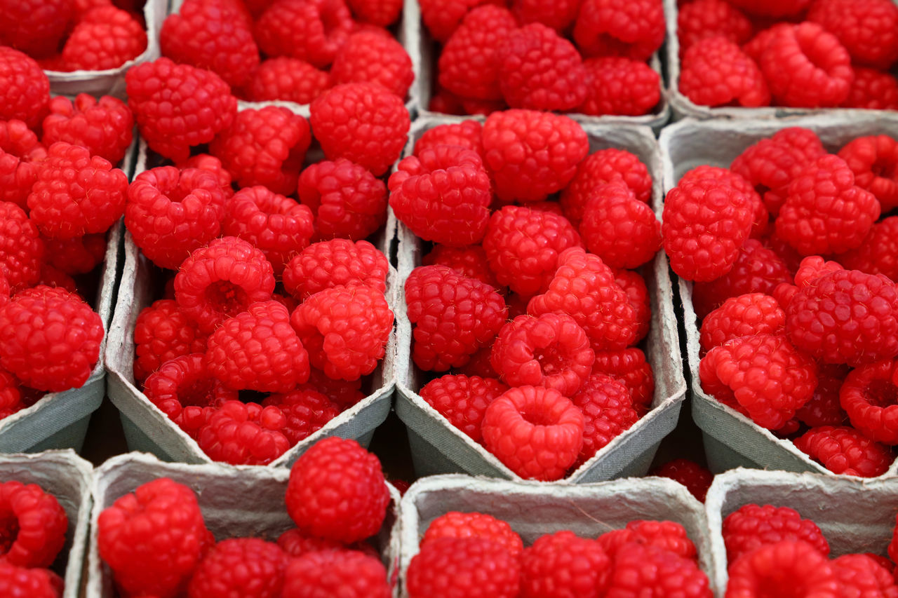 Fresh sweet raspberry berry fruit close up background Abundance Berry Berry Fruit Berrys Box Close-up Container Food Food And Drink Fresh Freshness Fruit Healthy Eating Healthy Food Large Group Of Objects Market Market Place Market Stall Raspberry Raspberry♥ Ready-to-eat Red Season  Supermarket Sweet Food