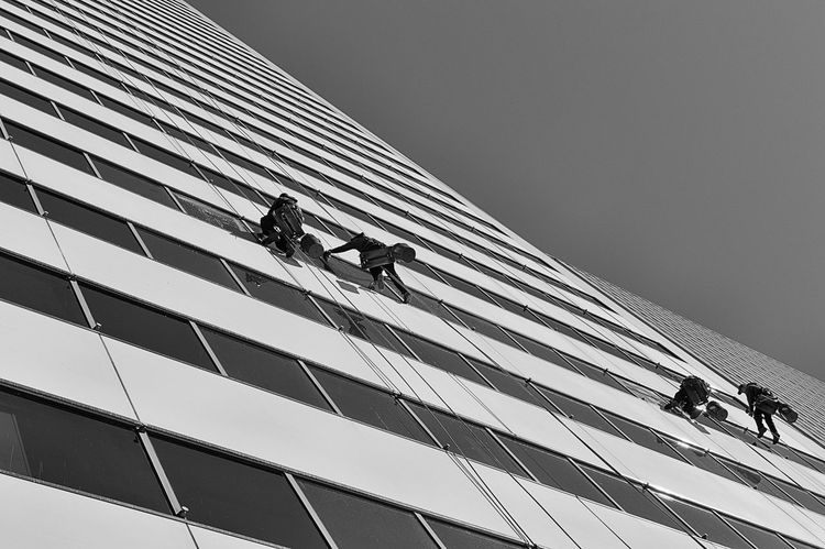 Window Washers Cleaning A Skyscraper Virtigo Working Architecture Blackandwhite Building Exterior Built Structure Cleaning Day Four People Labor Low Angle View Manual Worker Men Monochrome Occupation Outdoors People Real People RISK Skill  Sky Skyscraper Streetphotography Window Washer Working