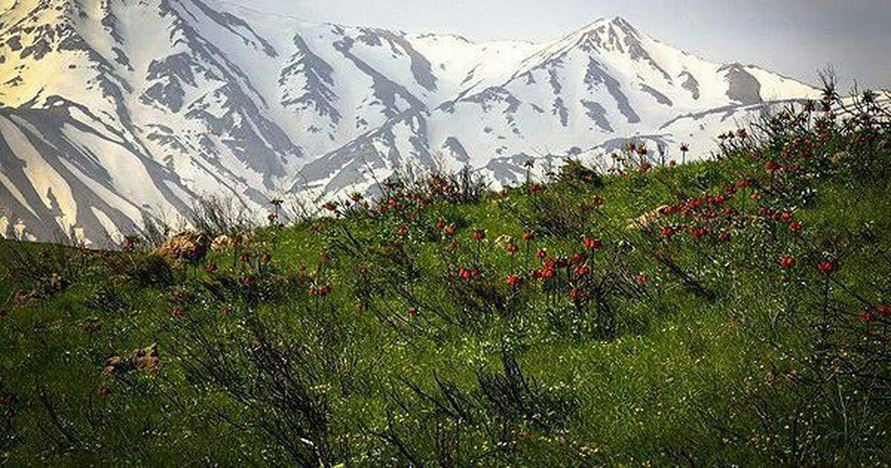 Iran♥ پهناورترین دشت الیگودرز aligodarz دشت دالانی