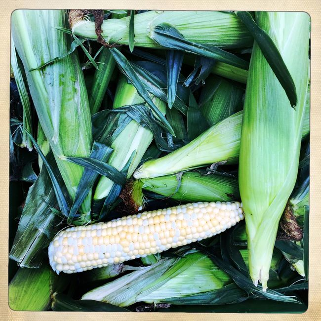 Corn. Corn Farmers Market Fresh Produce Vegetables Green Natural EyeEm Best Shots