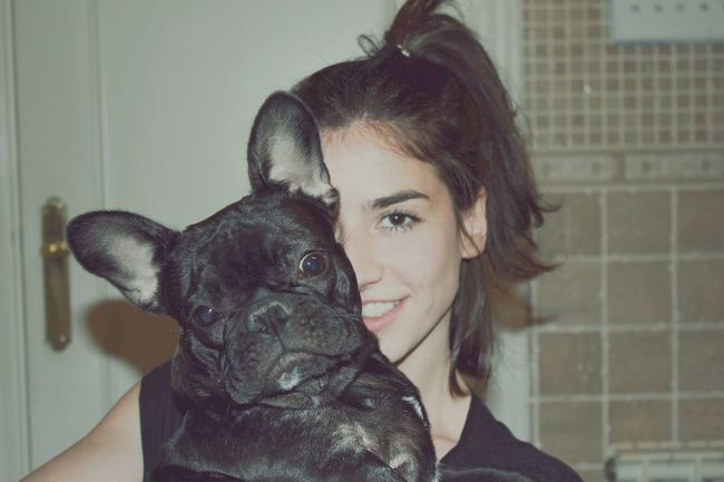 Adoreyou Bulldog Dog Doggy Doggylife DoggyLove Frenchbulldog Home Interior Loving Miniña Pets