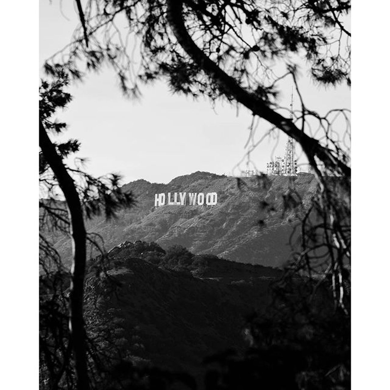 Hollywood Classic🎥 Check out my New Blogroll 👉prophetco.tumblr.com for other shots as well as additional formats and edits. ✌ Dreamcreateprosper TheCreatorClass Mkexplore Lifeofadventure vsco vscogang visualsgang premiumposts vscogramer top_selects exploreeverything justgoshoot featuremeinstagood instagood instavibes nothinnspecial exploreeverything featuremeinstagood instagood instavibes way2ill agameoftones weexplore_ HsDailyFeature createcommune socality heatercentral