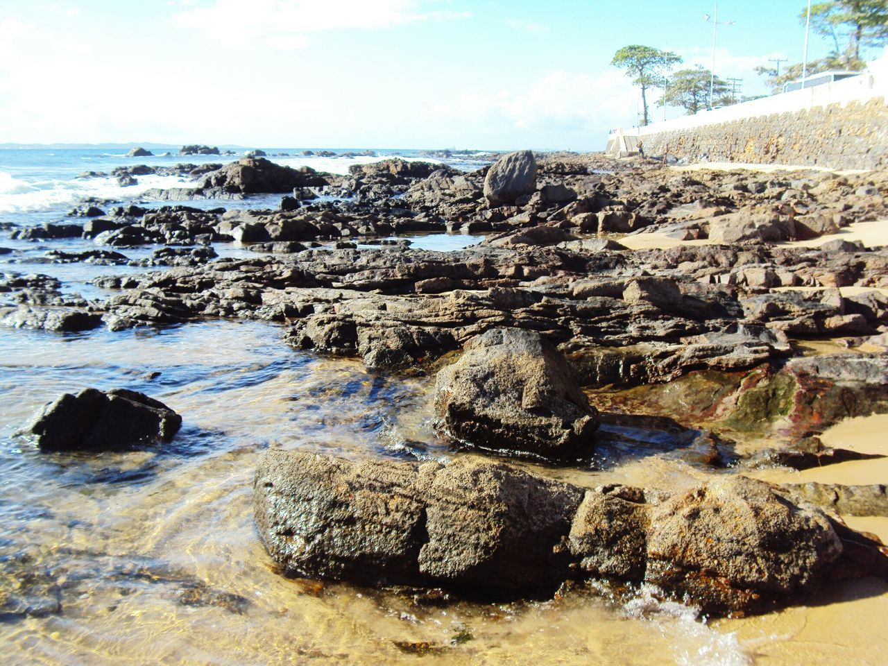 Praia Do Forte, Bahia - Brasil Salvador Bahia Brasil Brazil Beach Praia Rochas Blue Sky Clouds Sand & Sea Sand