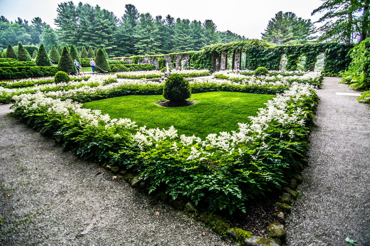 plant, topiary, growth, green color, nature, day, flower, outdoors, no people, tree, flowerbed, grass, beauty in nature, botanical garden