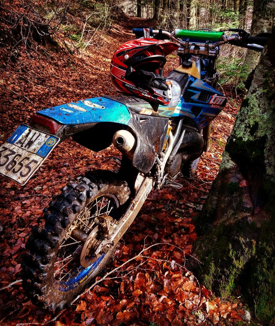 Enduro Free Motorcycle Intothewild Aspromonte Enduro Outdoors Calabria Nature Naturelovers Adventure Time One Man Only Lost Freedom Calabriadascoprire Steel Heart