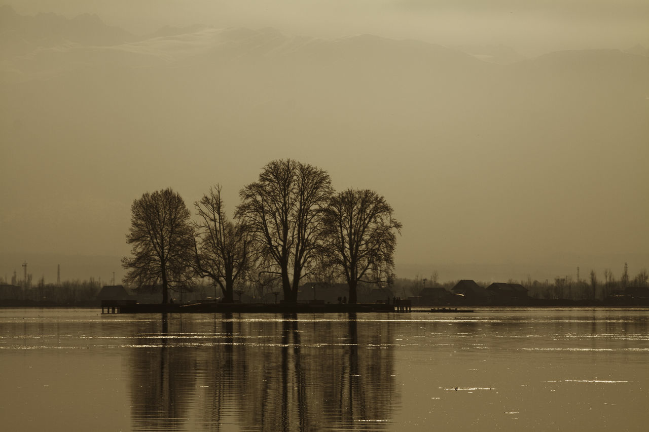 Silhouette Trees By River Against Sky