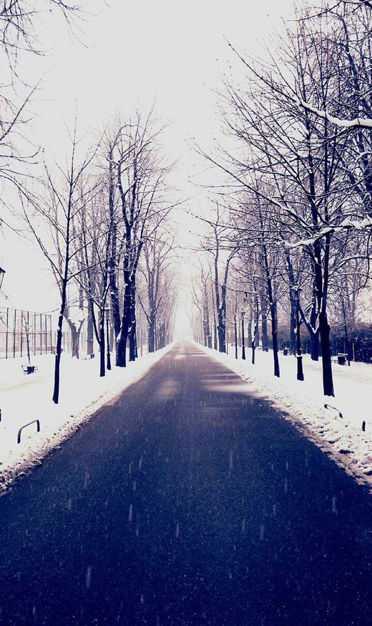 Winter Snow ❄ Zagreb, Croatia Zagreb Tak Imam Te Rad Zagreb U Srcu Vrapce Vrapcanska Aleja Zagreb Zapad